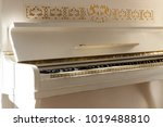 white piano  side view of... | Shutterstock . vector #1019488810