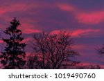watching this sunset there was... | Shutterstock . vector #1019490760
