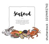 vector hand drawn seafood... | Shutterstock .eps vector #1019492743