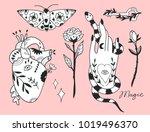 hand drawn various magic... | Shutterstock .eps vector #1019496370