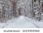 a railway in the winter forest... | Shutterstock . vector #1019503960