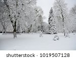 winter landscape with snow   Shutterstock . vector #1019507128