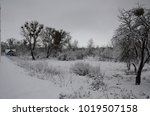 winter landscape with snow   Shutterstock . vector #1019507158