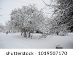 winter landscape with snow   Shutterstock . vector #1019507170