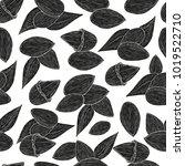 almond. background  wallpaper ... | Shutterstock .eps vector #1019522710