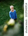 Small photo of Boy admiring fruit in tree