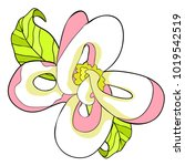 the is florida dogwood flower... | Shutterstock .eps vector #1019542519