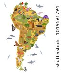 south america flora and fauna... | Shutterstock .eps vector #1019561794