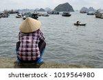 woman in vietnamese traditional ... | Shutterstock . vector #1019564980