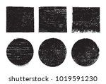 vector grunge backgrounds... | Shutterstock .eps vector #1019591230