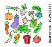 cute colorful vegetable doodle... | Shutterstock .eps vector #1019603884