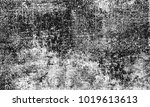 texture grunge. black and white ... | Shutterstock . vector #1019613613