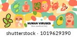 human viruses  body infections  ... | Shutterstock .eps vector #1019629390