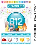 cyanocobalamin vitamin b12... | Shutterstock .eps vector #1019649094
