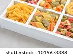 variety of types and shapes of...   Shutterstock . vector #1019673388