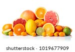 isolated citrus fruits. pieces... | Shutterstock . vector #1019677909