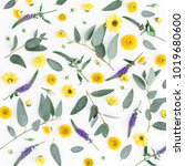 flowers composition. pattern... | Shutterstock . vector #1019680600