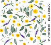 flowers composition. pattern... | Shutterstock . vector #1019680600