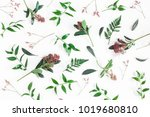 flowers composition. pattern... | Shutterstock . vector #1019680810