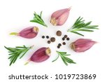 garlic with rosemary and... | Shutterstock . vector #1019723869