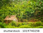 Small Wooden Bamboo Hut In The...