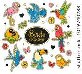birds patches collection.... | Shutterstock .eps vector #1019740288