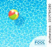 clear blue swimming pool water... | Shutterstock .eps vector #1019784280