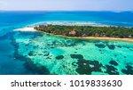 prison island. zanzibar ...   Shutterstock . vector #1019833630