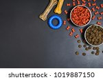 Stock photo dry dog pet food in bowl and accessories on blach chalkboard background top view pet feeding 1019887150