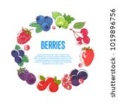 juicy and sweet berries round... | Shutterstock .eps vector #1019896756
