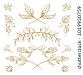 set of hand drawn floral... | Shutterstock .eps vector #1019920759