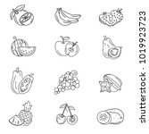 simple fruits icon   Shutterstock .eps vector #1019923723