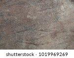 marble  texture background   Shutterstock . vector #1019969269