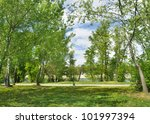 spring at the park | Shutterstock . vector #101997394