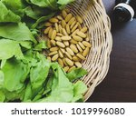 chinese kale.there are many... | Shutterstock . vector #1019996080
