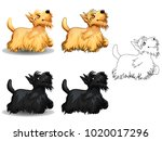The Set Of Cute Little Dogs Of...