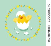 cute little chick with egg... | Shutterstock .eps vector #1020056740