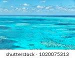 in  australia natuarl park the...   Shutterstock . vector #1020075313