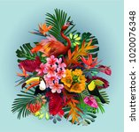 vector  of tropical birds and... | Shutterstock .eps vector #1020076348
