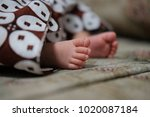 new born foot baby on batik... | Shutterstock . vector #1020087184