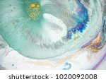 beautiful natural luxury.... | Shutterstock . vector #1020092008