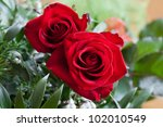 Stock photo red rose 102010549
