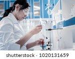 experimental approach.... | Shutterstock . vector #1020131659