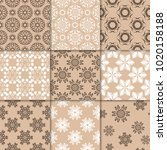 brown beige floral ornaments.... | Shutterstock .eps vector #1020158188