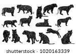 isolated  silhouette of a tiger ... | Shutterstock . vector #1020163339