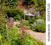 a secluded garden bench by an...   Shutterstock . vector #1020197110