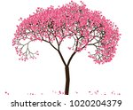 vector illustration of an... | Shutterstock .eps vector #1020204379