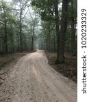 Foggy Forest On A Dirt Road In...