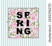 spring text concept. elegant...   Shutterstock .eps vector #1020256270
