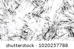 distressed black and white... | Shutterstock .eps vector #1020257788